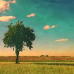 ger-van-den-elzen-digitally-painted-landscapes-14