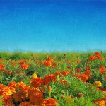 ger-van-den-elzen-digitally-painted-landscapes-17