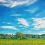ger-van-den-elzen-digitally-painted-landscapes-18