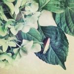 kathleen-magner-rios-uneasy-dreams-11