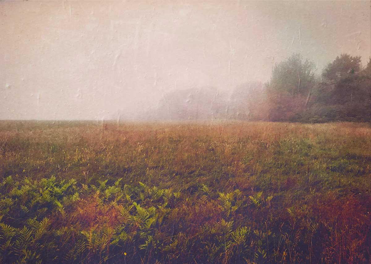 Lydia-Cassatt-Maine-01