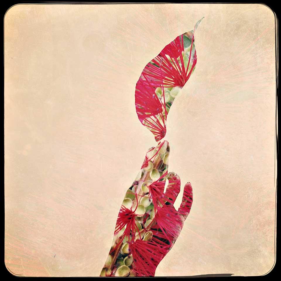 Tuba-Korhan-Summer-16