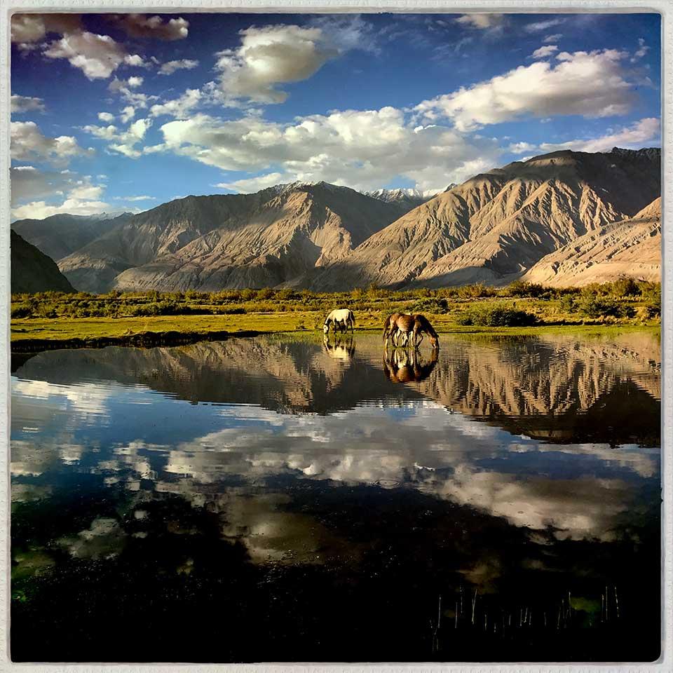 Dorota-Skowronska-Ladakh-20