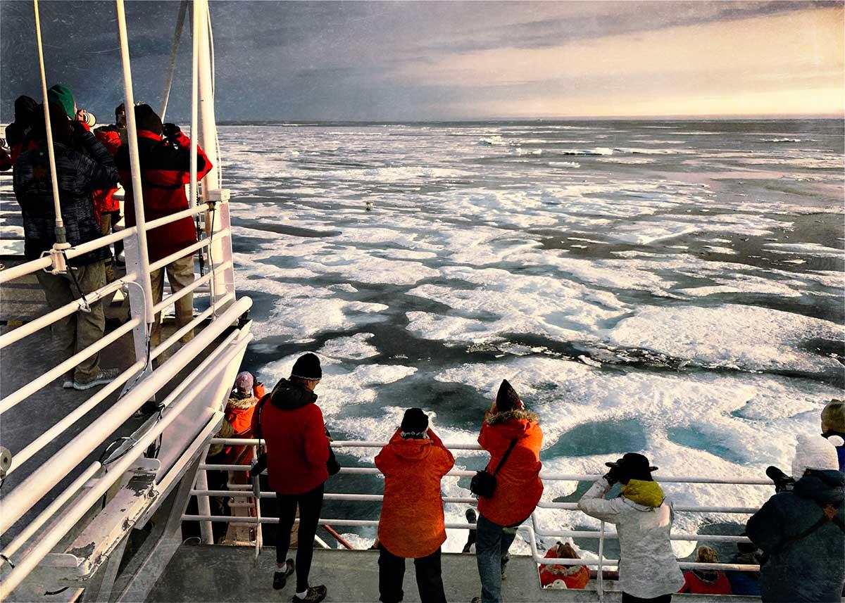 Lydia-Cassatt-Arctic-09