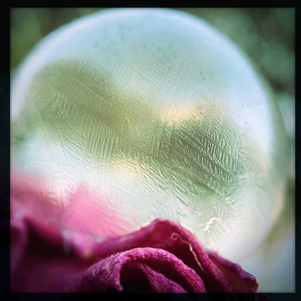 Jill-Lian-Tiny-Treasures-01