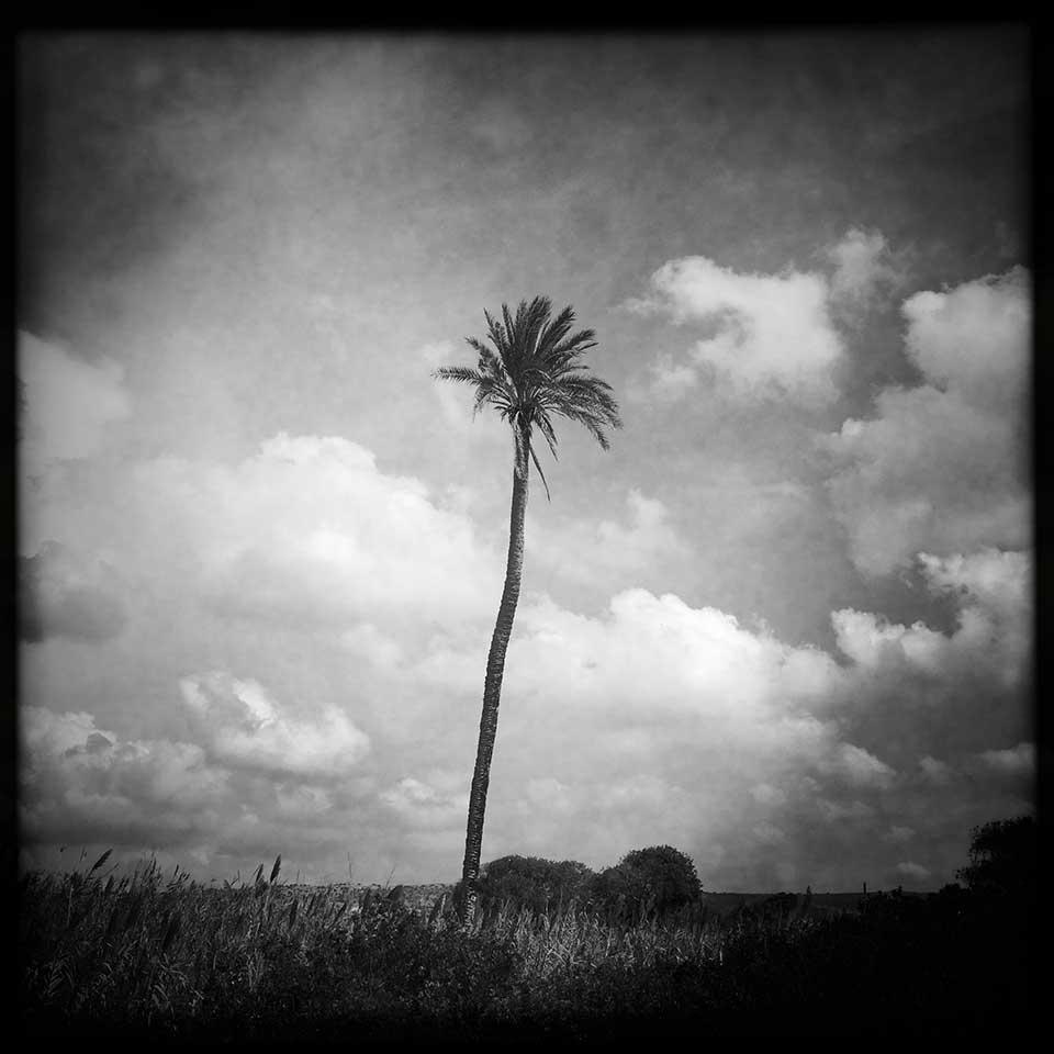 Valery-Hache-Sicily-06