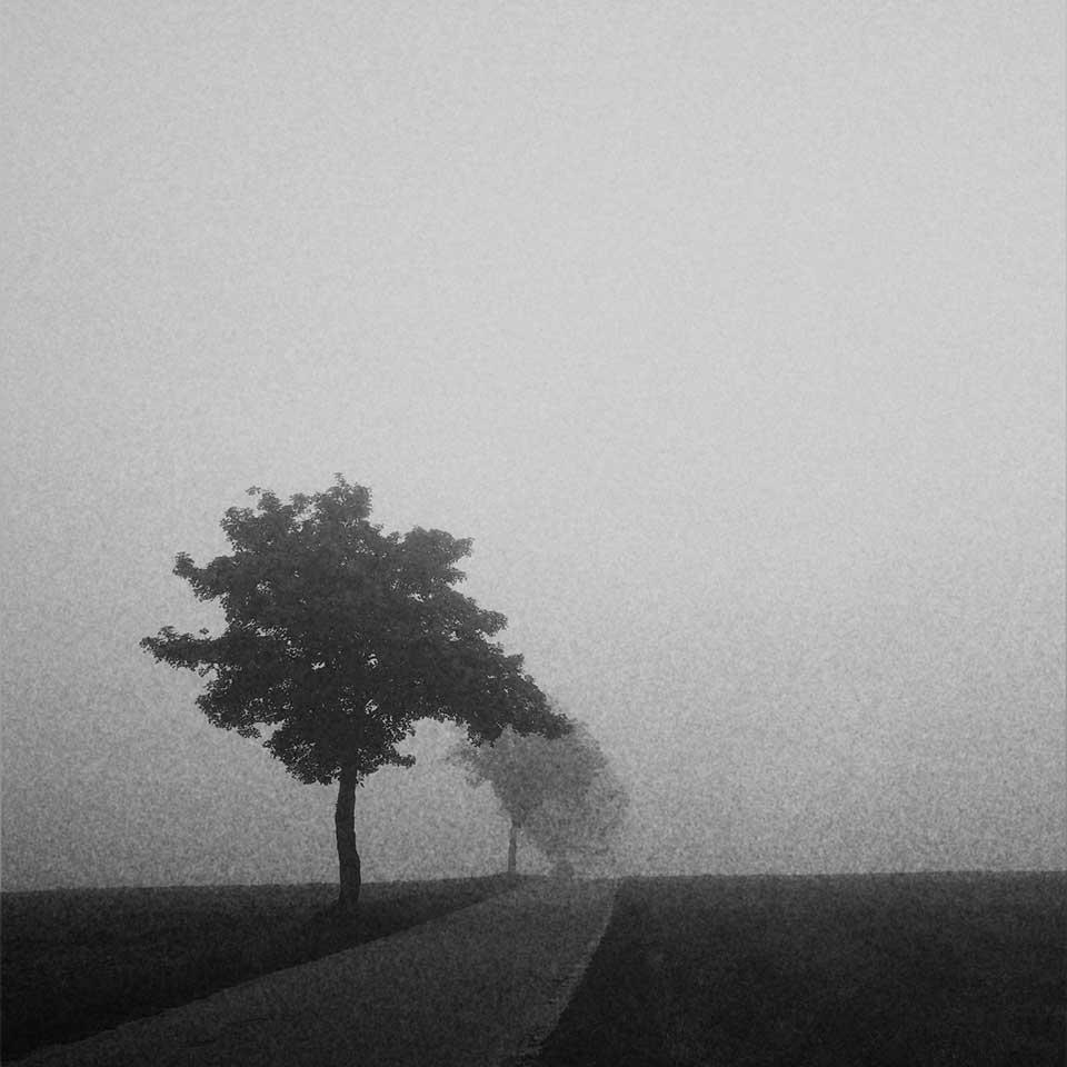 Birgit-Kwasniewski-Grayscale-01