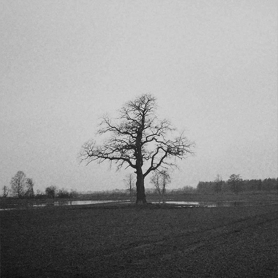 Birgit-Kwasniewski-Grayscale-07