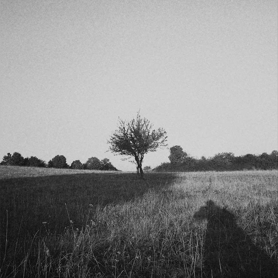 Birgit-Kwasniewski-Grayscale-09