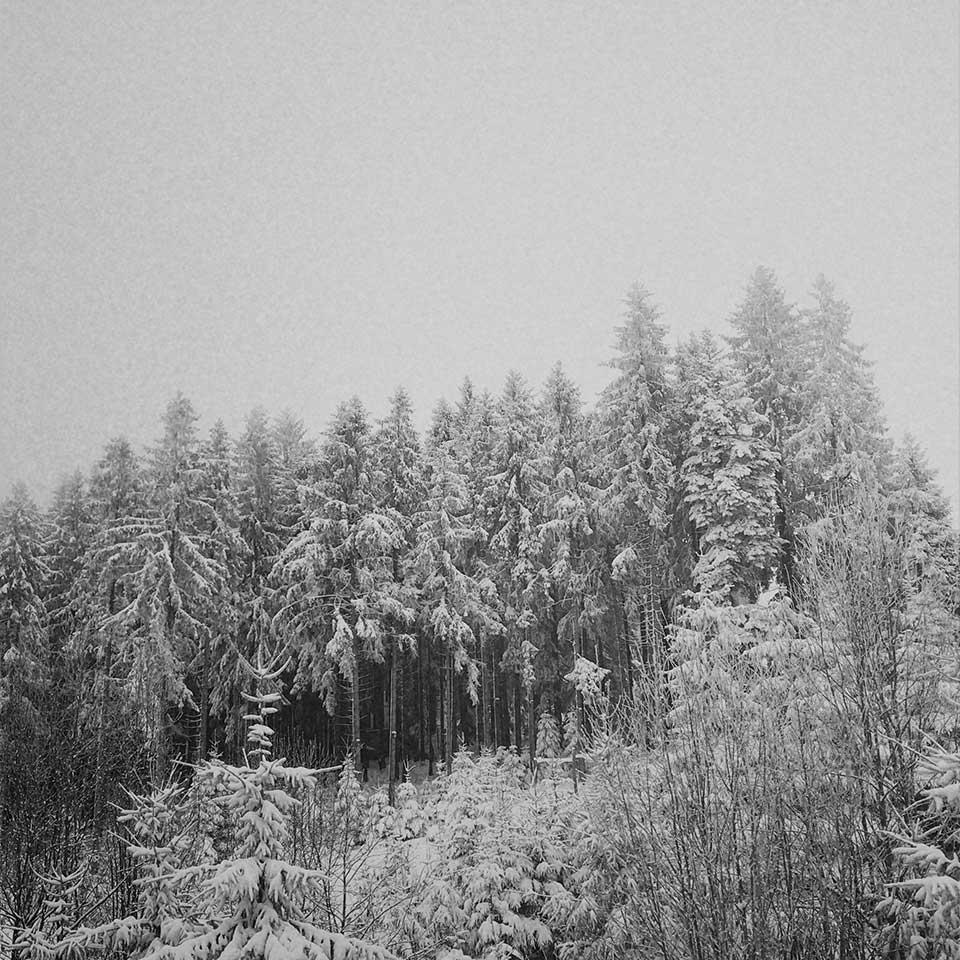 Birgit-Kwasniewski-Grayscale-17