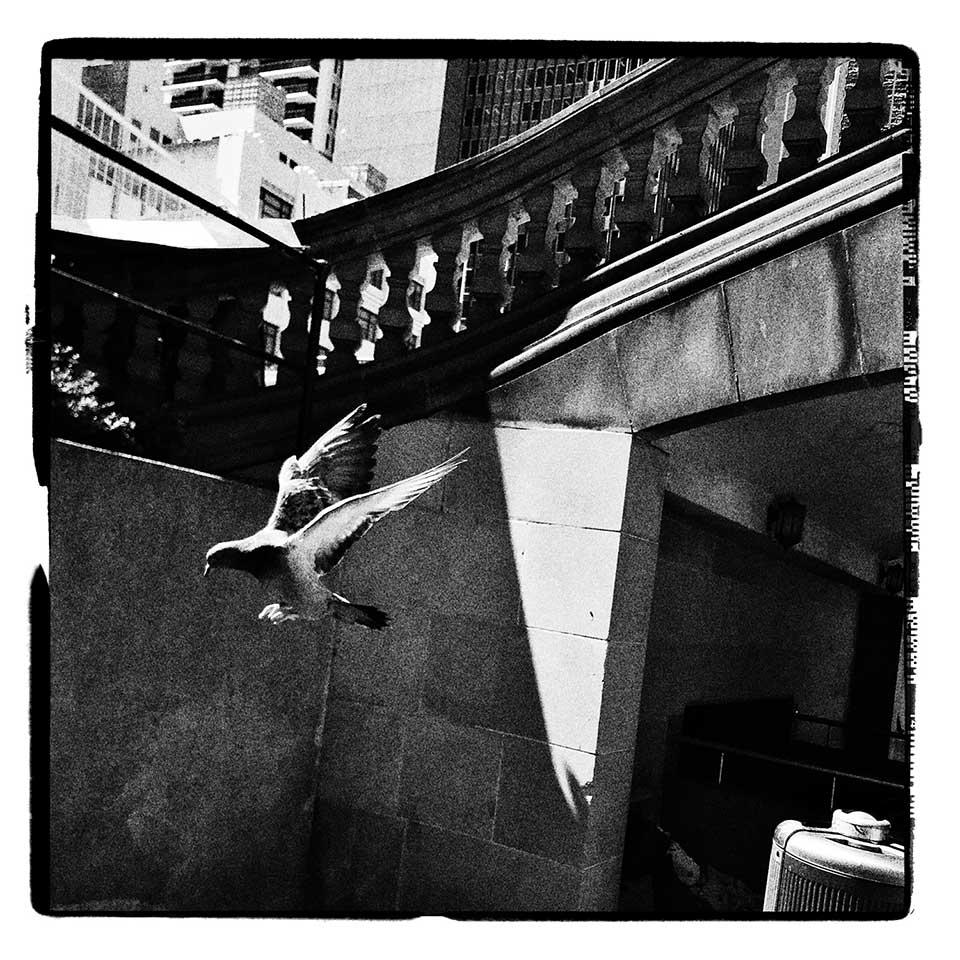 Markus-Newtown-SYD-HipstaPak-14