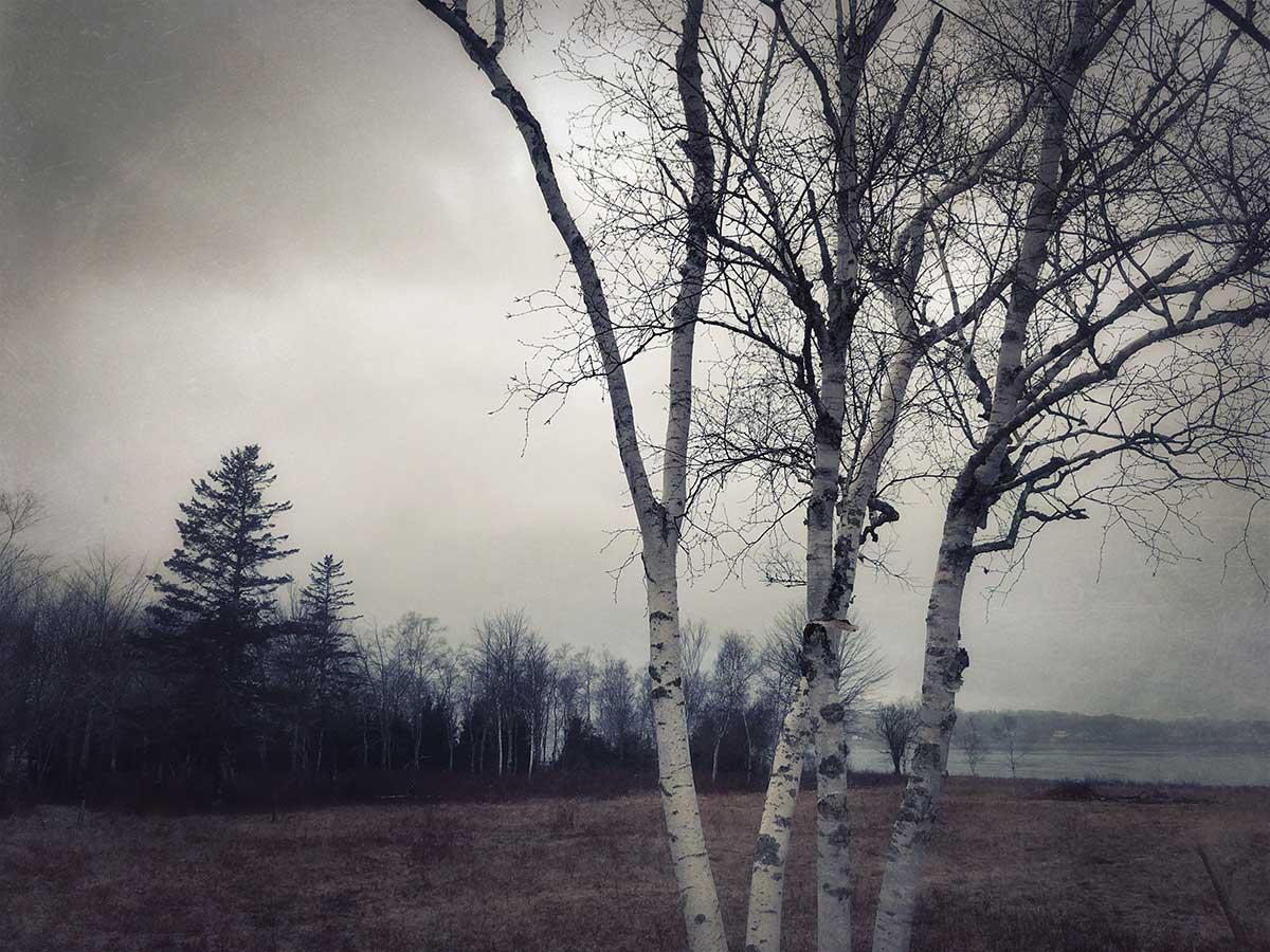 Lydia-Cassatt-Endings-Beginnings-03