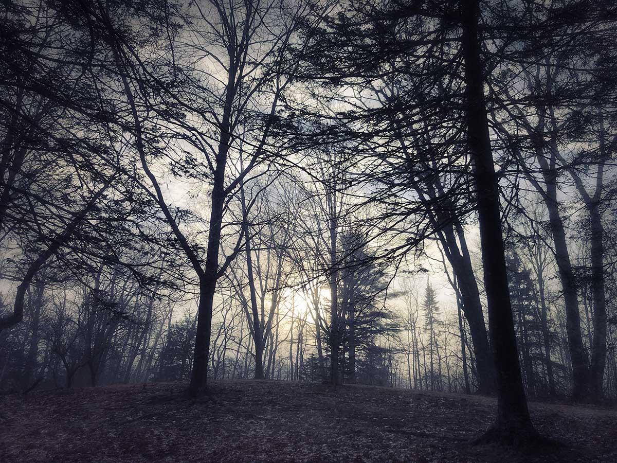 Lydia-Cassatt-Endings-Beginnings-14