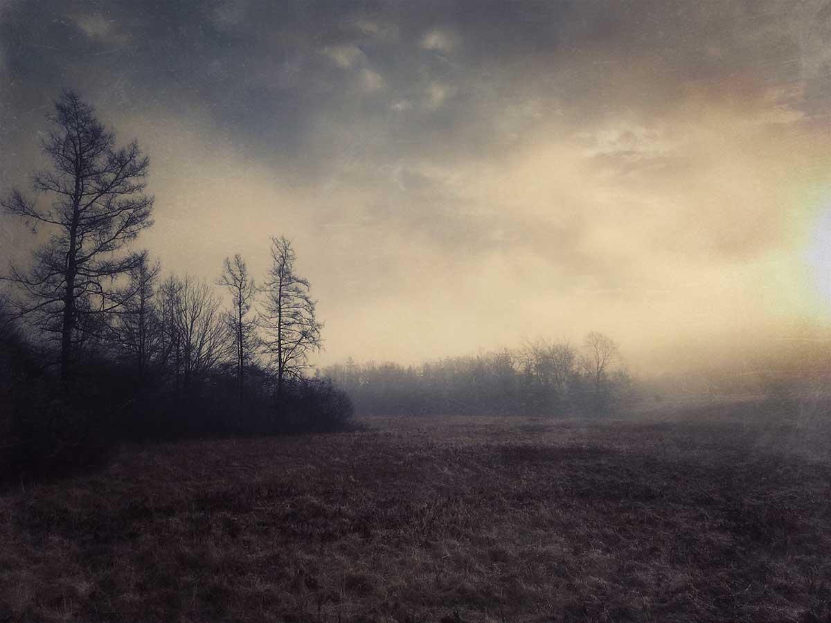 Lydia-Cassatt-Endings-Beginnings-22