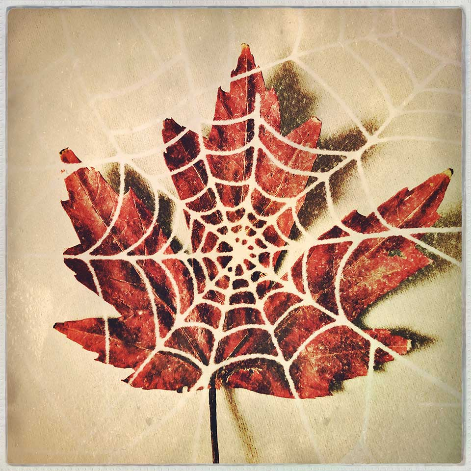 Kat-Meininger-Red-Maple-Leaf-04