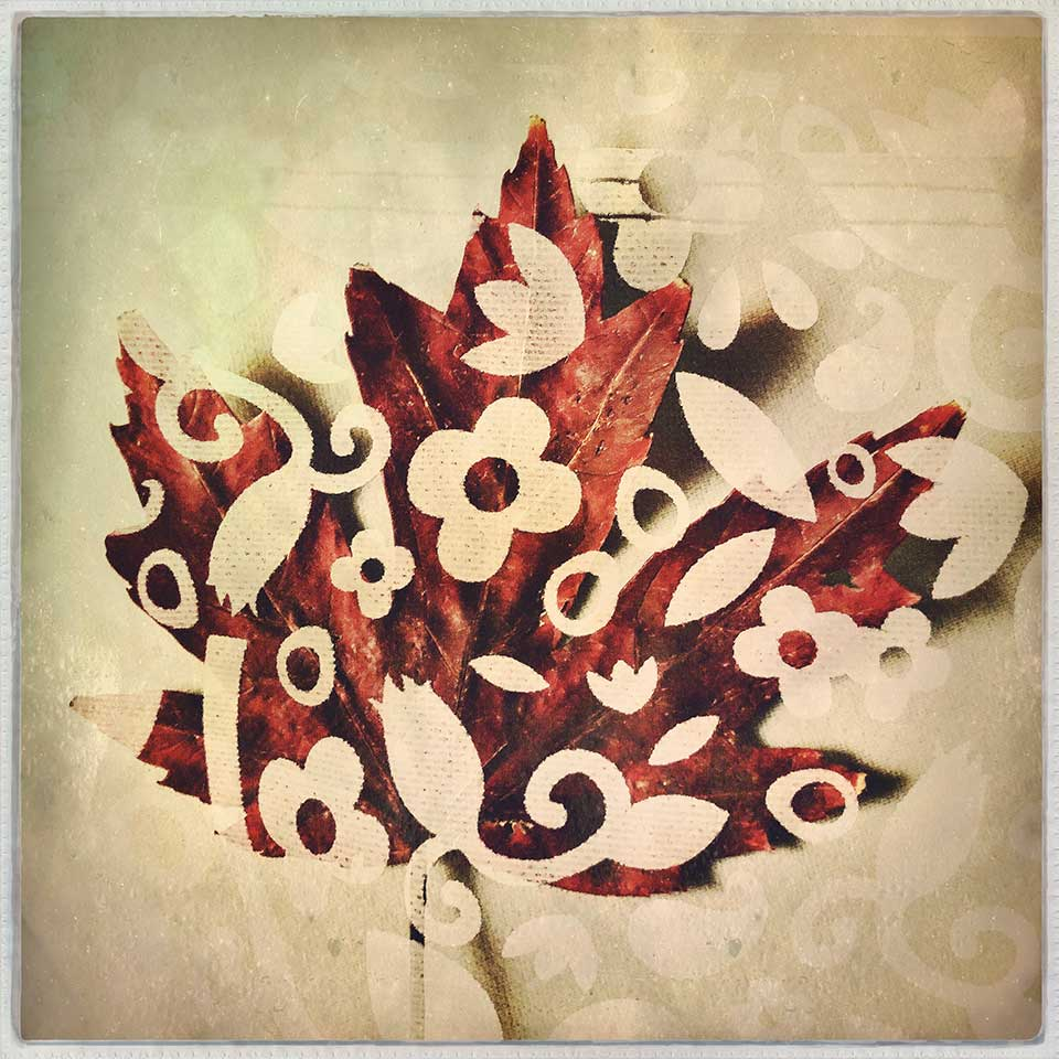 Kat-Meininger-Red-Maple-Leaf-08