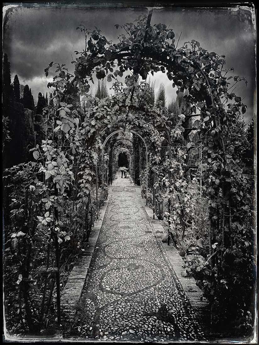 Lydia-Cassatt-Alhambra-C623-19